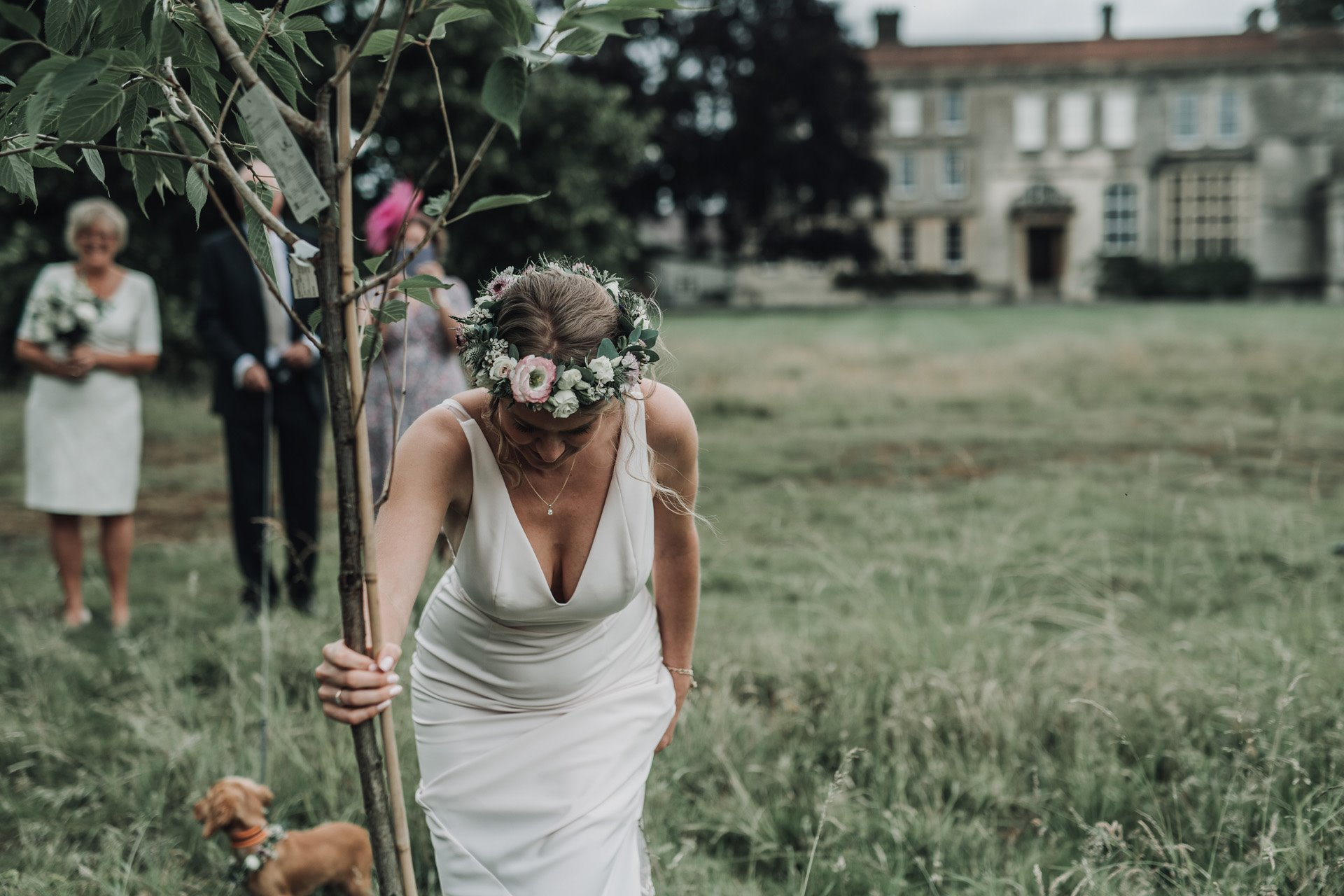 Bride plants a tree on her micro wedding day as part of the ceremony