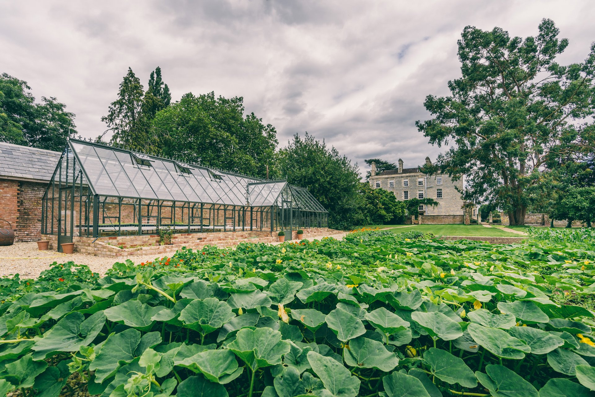 Walled garden at Elmore Court is stocked full of vegetables and ingredients for wedding menus